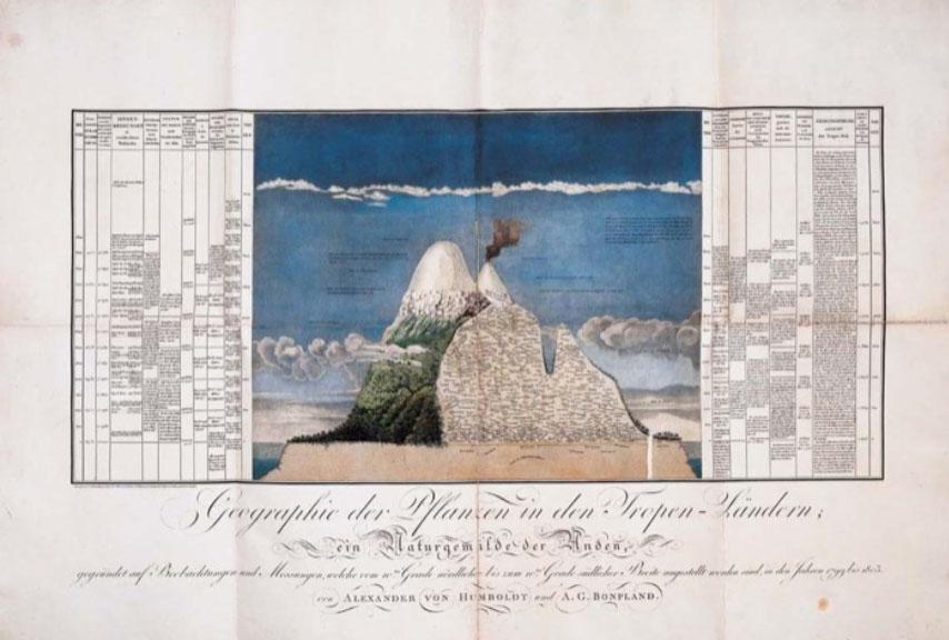 GeographiederPflanzen-humboldt-1806