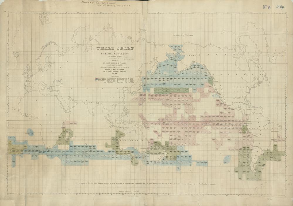 Whale Chart 1851