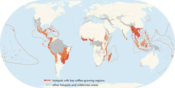hotspots_coffee_map