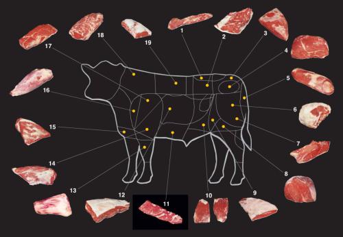 Beef Cut Chart.png