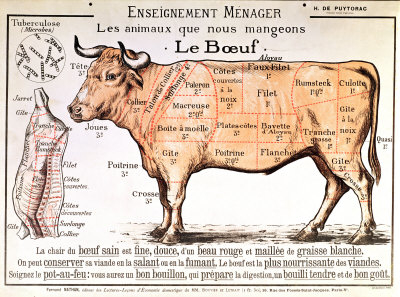 beef-diagram-depicting-the-different-cuts-of-meat-posters-1