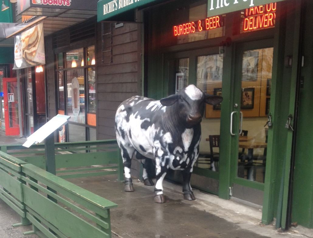 Cow outside Burger Joint.png