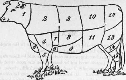 Cuts-of-Beef 1922 Jane Eayre Fryer