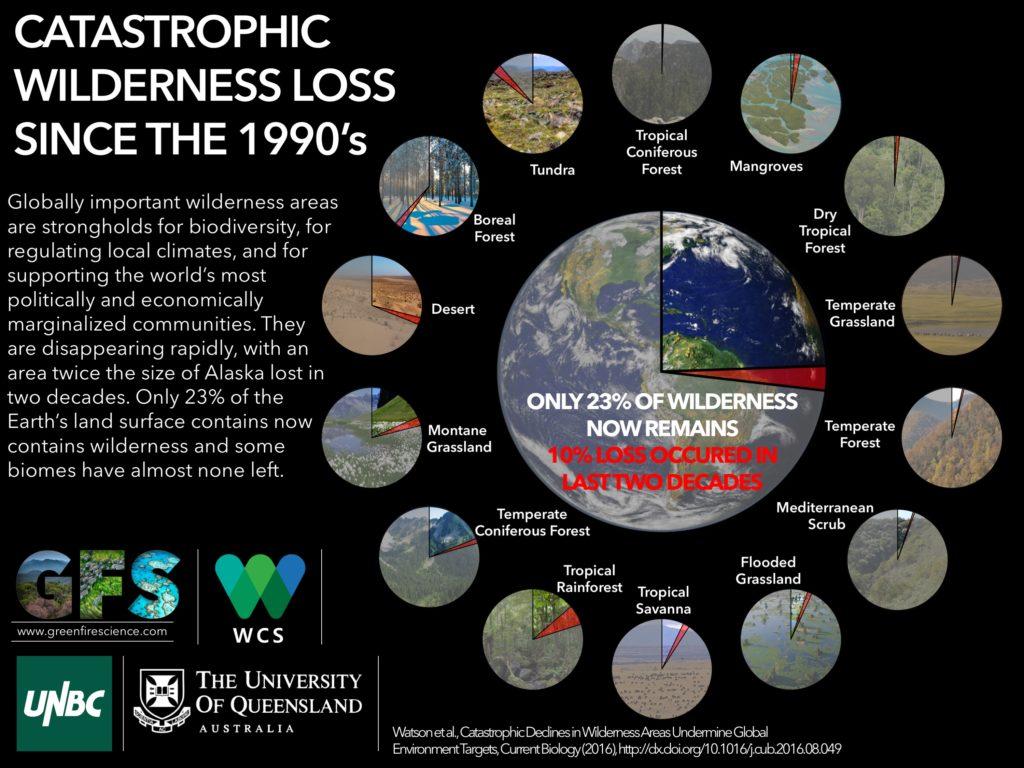 wild_infographic2-1-1-1024x768