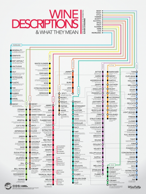 wine-descriptions-chart-infographicx