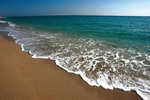 florida-coastline