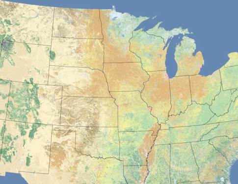 Midwest Landcover in Tan row crops