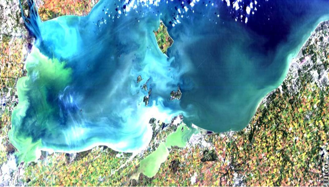 Lake Erie satellite image