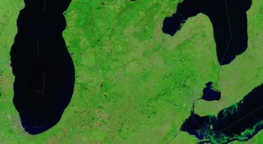 Modis Green Erie