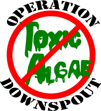 Operation-Downspout-Logo