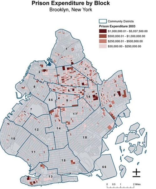 Mapping Prison Expenditures in Brooklyn NY--Eric Cadora 2004