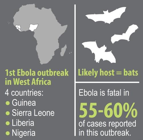 Ebola Outbreak Poster