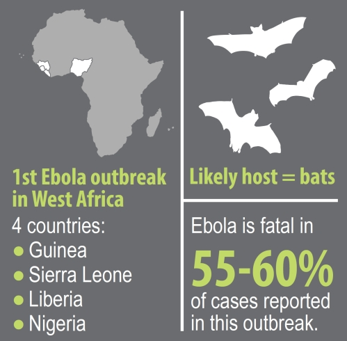 Ebola Outbreak Poster