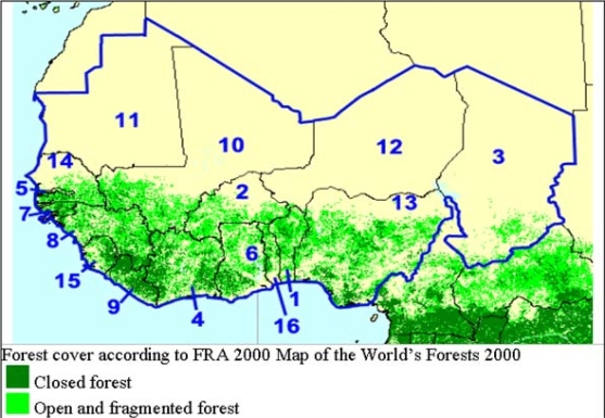 FAO World's Forests 2000