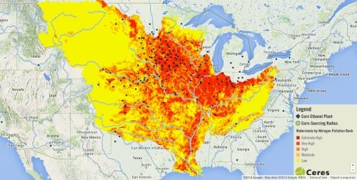 Nitrogen Pollution of Miss Watersheds