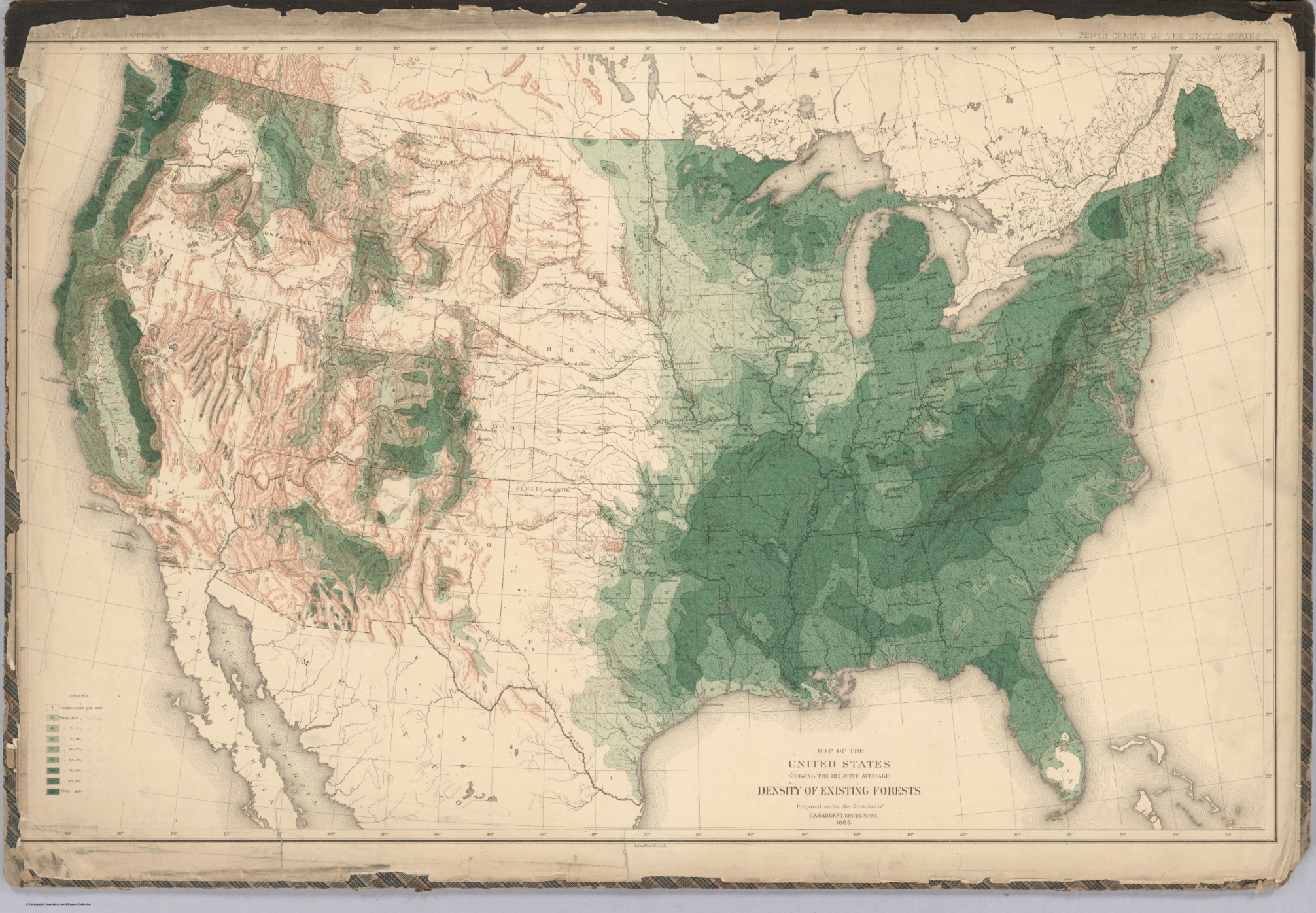 United States Density of Existing Forests 1884