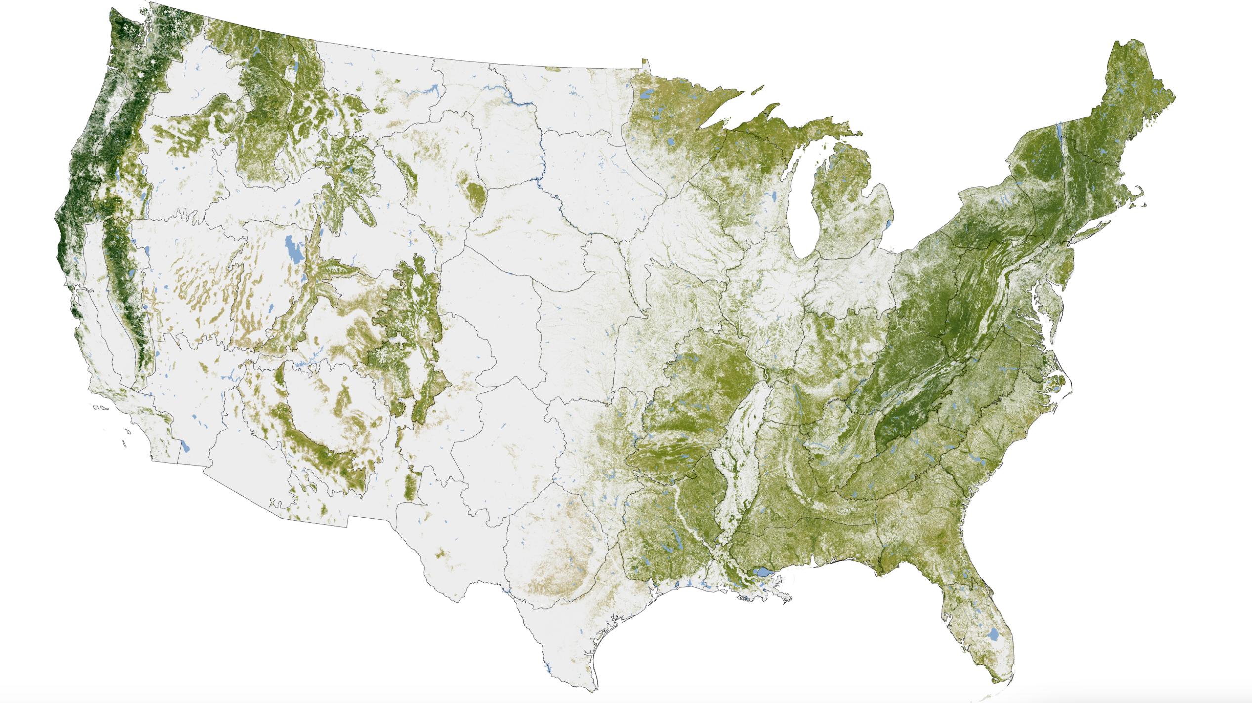 Woody Biomass from NASA 1999-2002