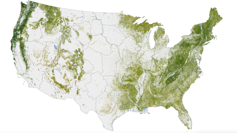 Woody Biomass from NASA 1999-2002
