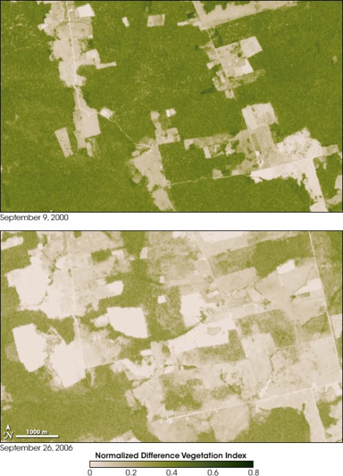 aster_deforestation_brazil Rondonia over six years