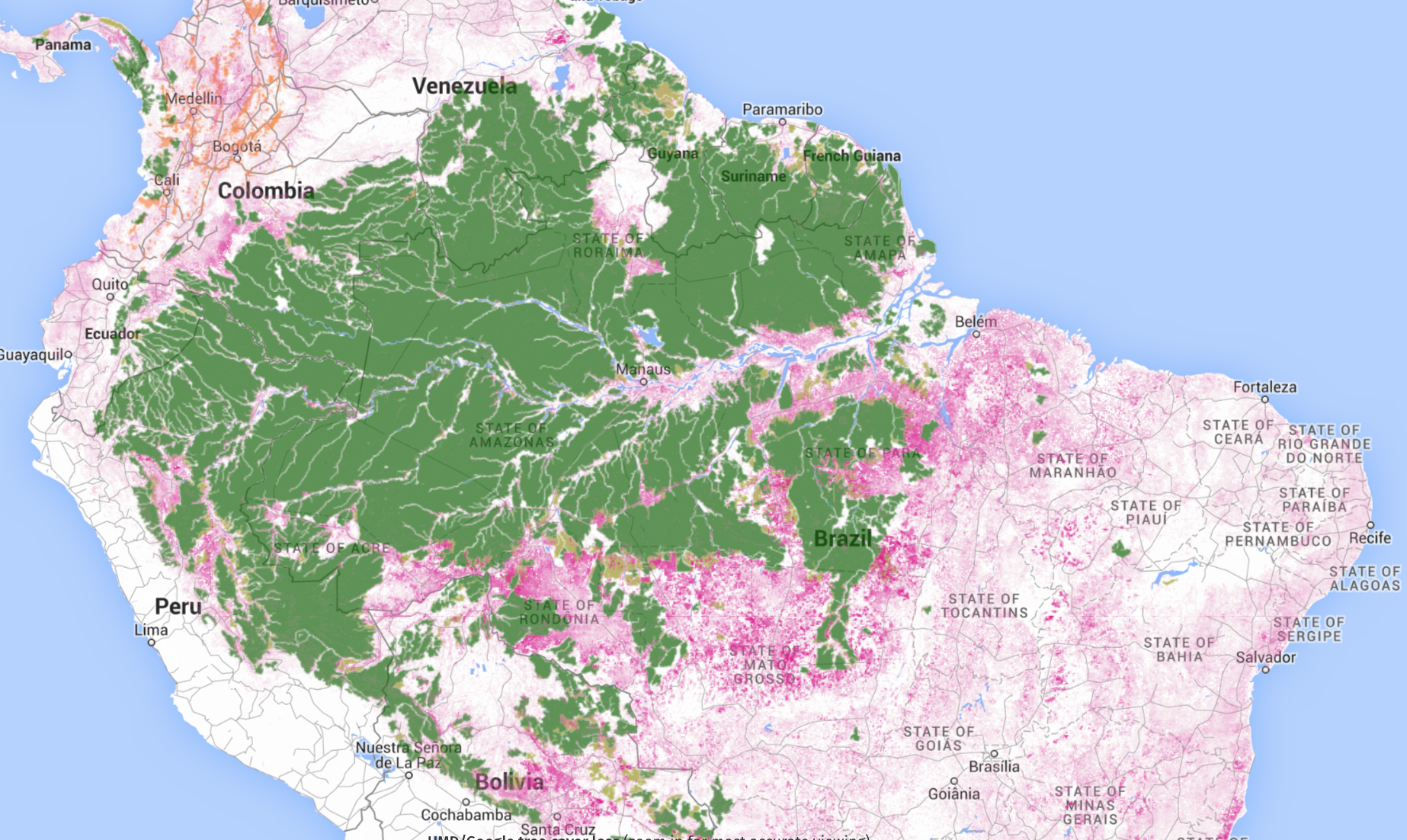 intact tree cover amazonia