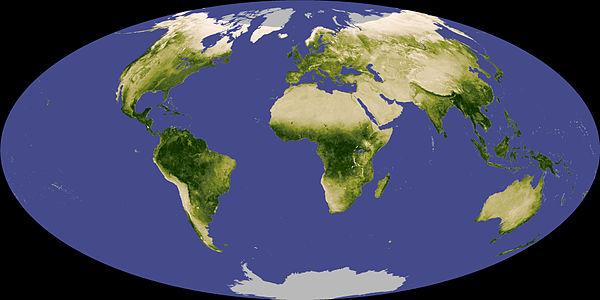 600px-Globalndvi_tmo_200711_lrg.jpg