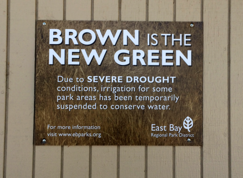 Brown New Green