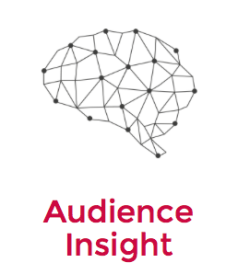 audience-insight
