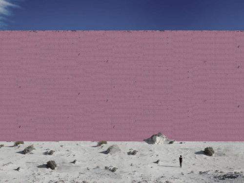 the-designers-imagineda-pink-wall-since-trump-has-repeatedly-said-it-should-be-beautiful.jpg.png