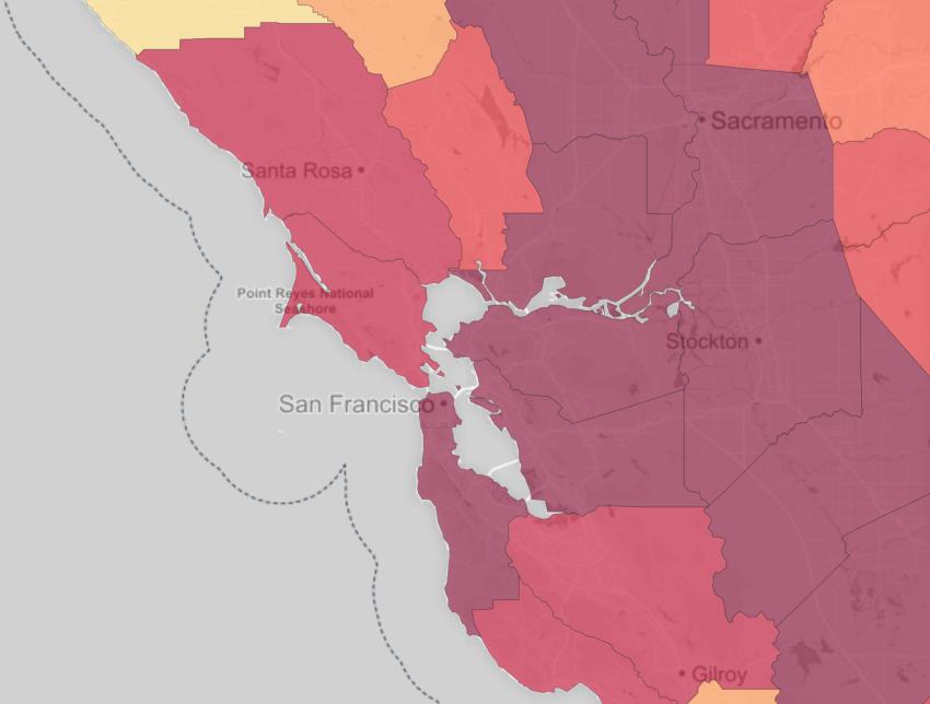 Bay Area close-up