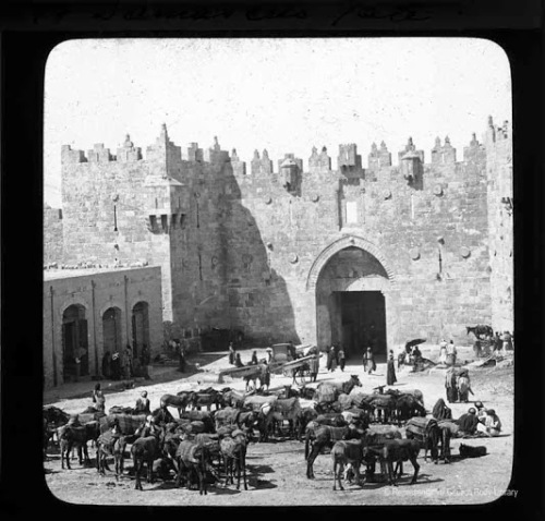 Irish damascus gate.jpg