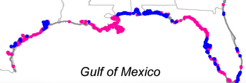 Gulf Coast shores invasiveness.png