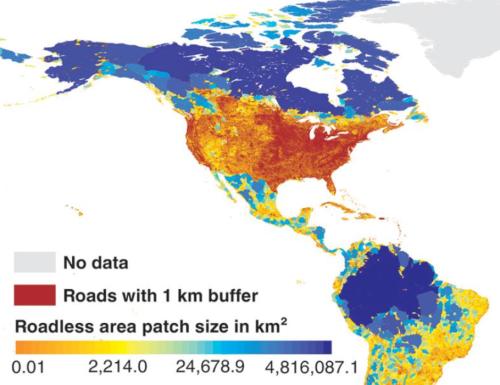 North America roadless.png