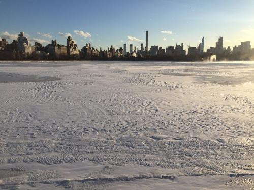 icy reservoir Cental Park.JPG