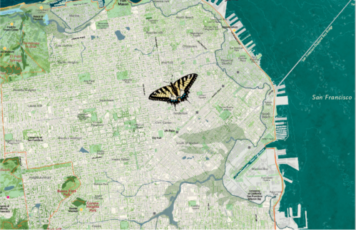 Nature in the City Butterfly Flying free.png
