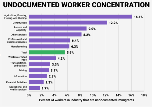 Undocumented sectors of work.png